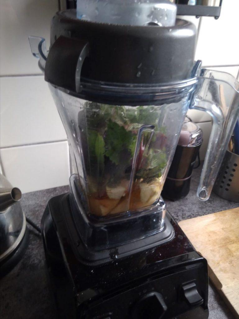 Küchenmixer Vitamix E310 im Test