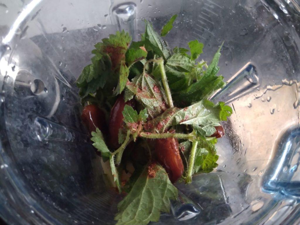 Wildkräuter Smoothie aus dem Küchenmixer